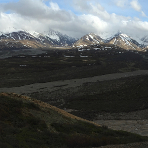 Alaska Range from Polychrome Pass